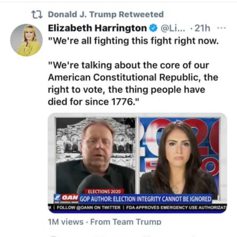 David Thomas Roberts' interview with Caitlinn Sinclair on OANN retweeted by President Trump